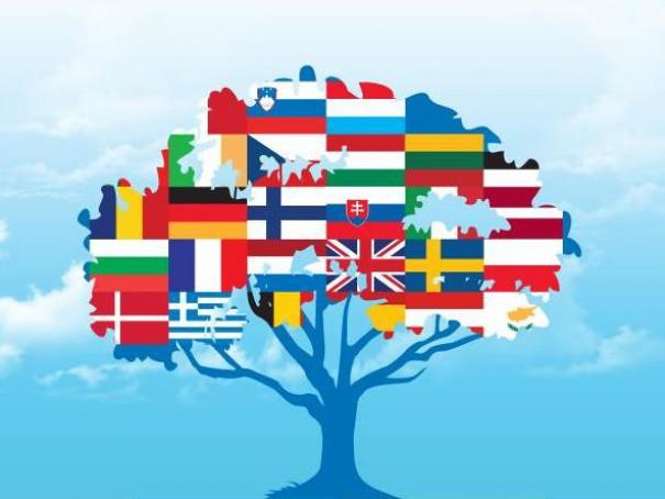 Подготовка к ОГЭ, ЕГЭ по английскому и французскому языкам.
